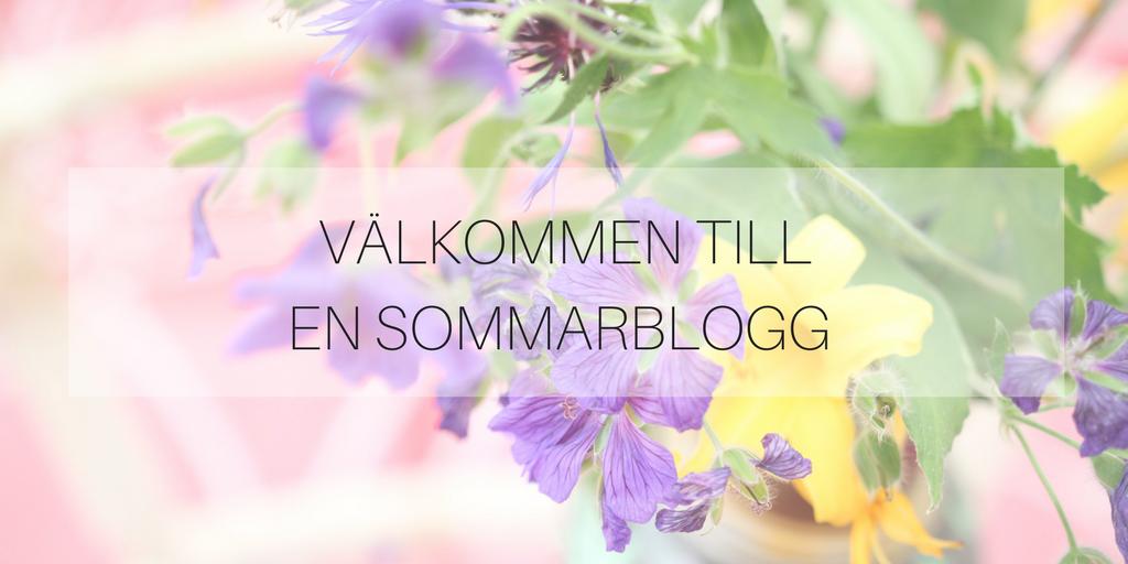 Välkommen till en sommarblogg
