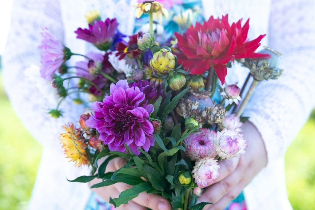 Självplock av blommor