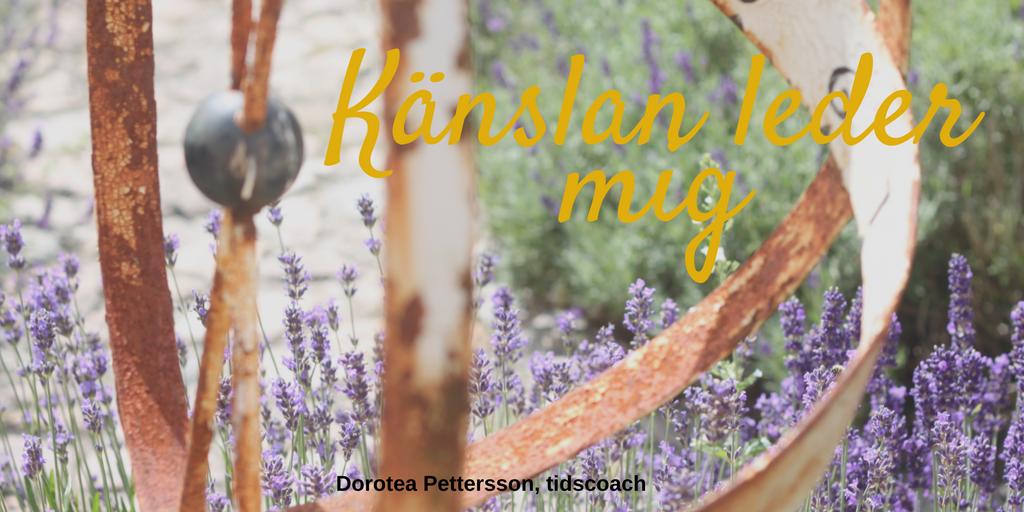 Dorotea Pettersson